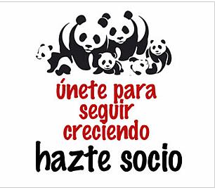 logo panda hazte socio