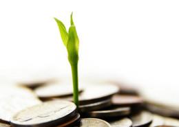 money-grow710