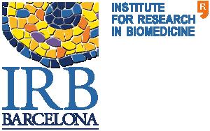 irb-logo-eng_horizontal-color-2x